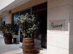 Ресторан-винный бар «Forest» в Подгорице
