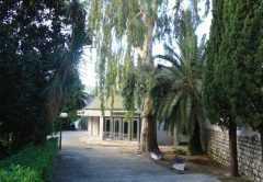Культурный центр «Dvorana Park» в Херцег-Нови (Kulturni centar «Dvorana Park»)