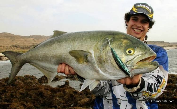 О Черногории: Рыбалка в Черногории: «белые» рыбы, что попадаются в Адриатике