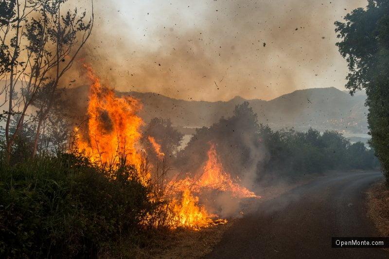 Проживание в Черногории: Новости Черногории: пожары