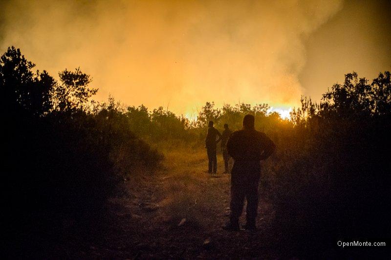 Проживание в Черногории: Новости Черногории: Черногория в огне: фотопост