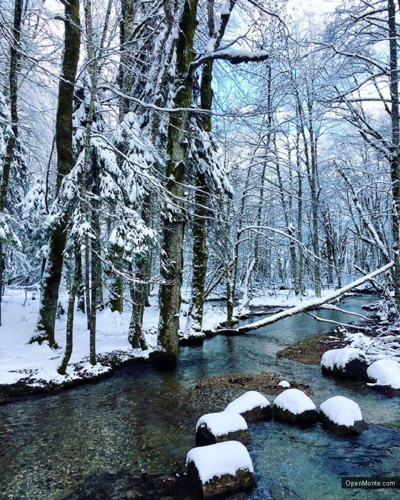 Фото Черногории: О Черногории: Биоградская гора
