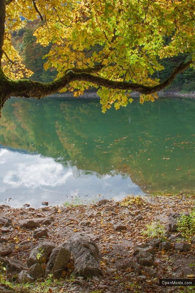 Фото Черногории: О Черногории: Београдское озеро. Национальный парк
