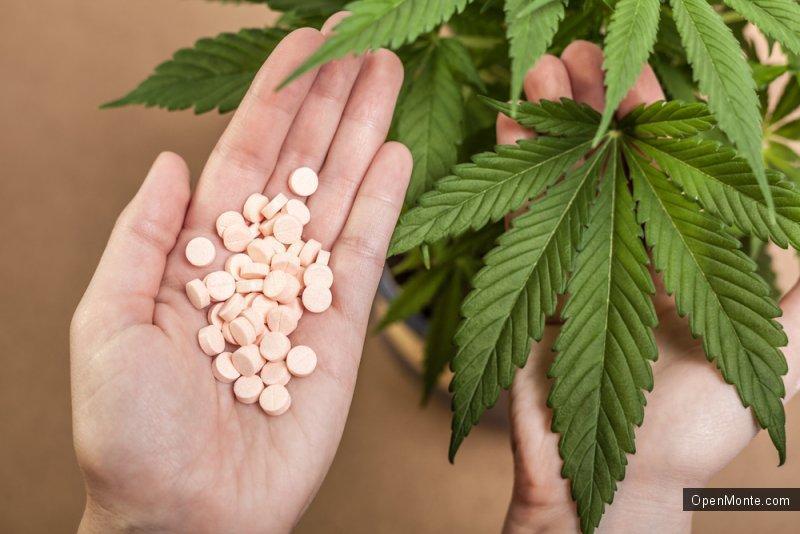 Не только Черногория: В Хорватии легализовали марихуану в медицинских целях