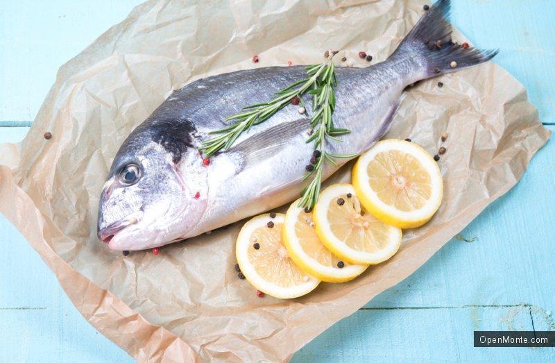 Новости Черногории: Черногория обладает богатыми рыбными ресурсами