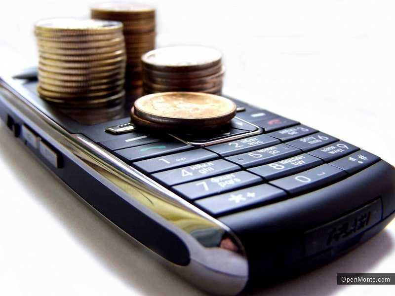 Новости Черногории: Черногорские депутаты проговорили 42 тысячи евро по телефону