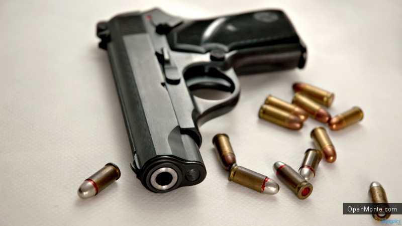 Новости Черногории: Больше всего владельцев оружия живут в Подгорице, Никшиче и Баре
