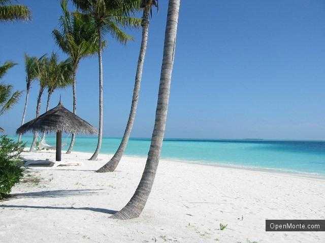 Партнеры: Туры на Мальдивы: особенности отдыха на райских островах