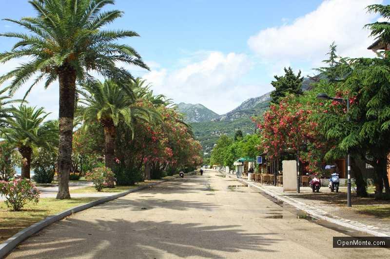 Новости Черногории: В Баре все спокойно: туристов из России и Украины меньше, а отдых — приятнее