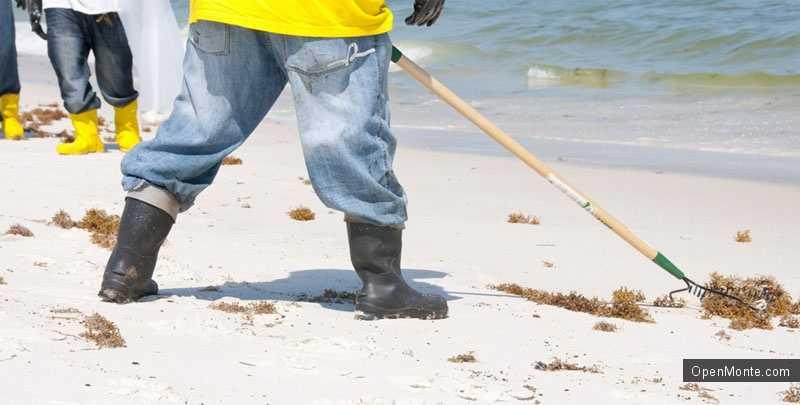 Новости Черногории: 10 мая волонтеры будут чистить пляжи Черногории