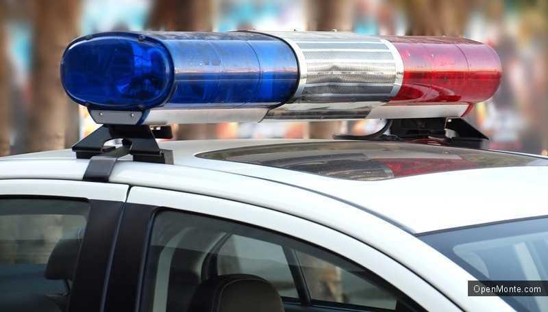 Новости Черногории: Управление полицией МВД Черногории оценило опасности от организованного криминала