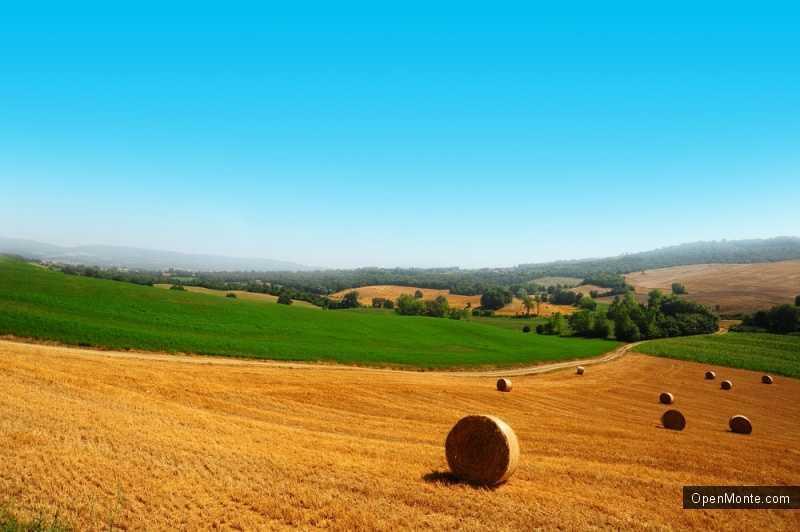 Новости Черногории: В Черногории зарегистрировано 160 производителей органических продуктов