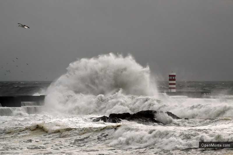 Новости Черногории: Капризы погоды в Черногории: дожди и сильный ветер
