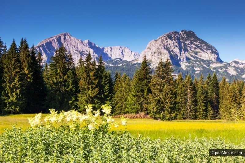 Новости Черногории: Австрийцы выбирают горы Черногории