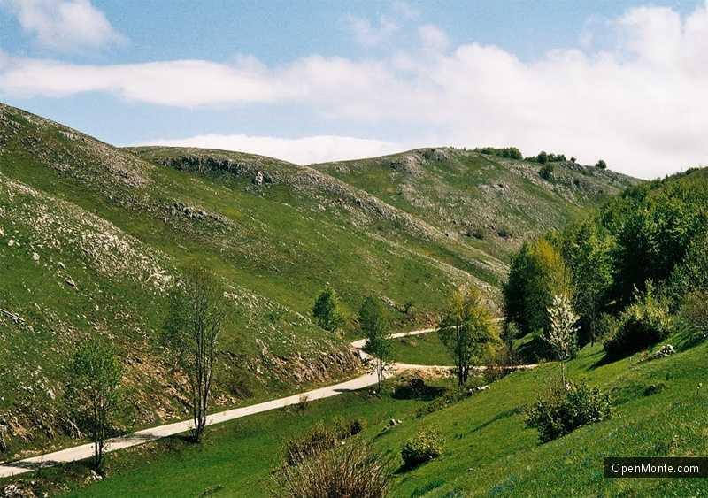 Новости Черногории: Открыта новая дорога в муниципалитете Плужине