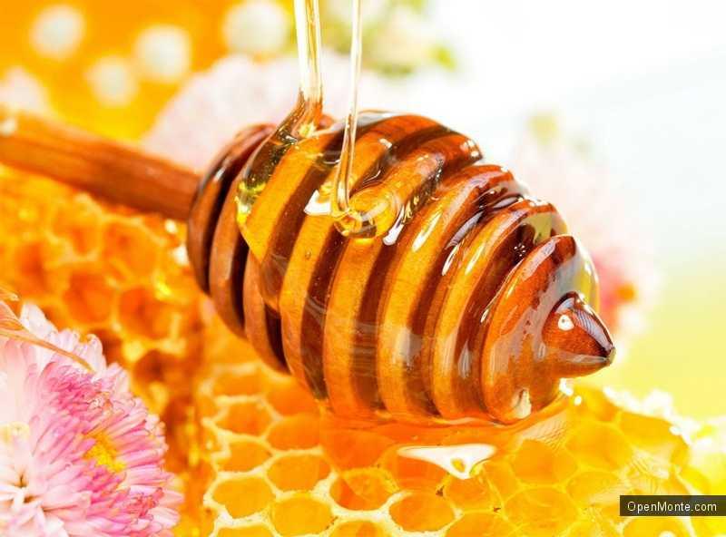 Новости Черногории: Черногория готова выставить пчелиный воск и мед на экспорт