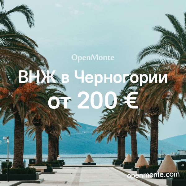 vnz-2019-sq
